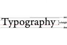 Typography and Accessibility: The Essentials