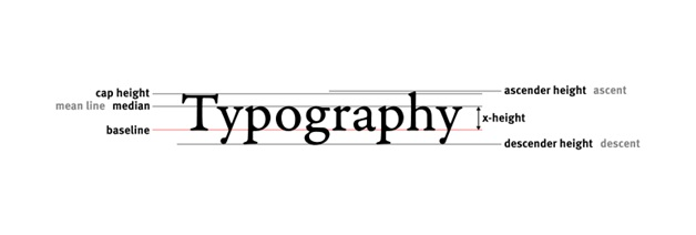 Typography and Accessibility