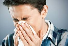 The airborne allergens affecting us all