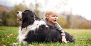 Advantages of having a pet at home