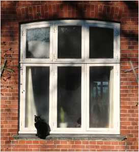 Money saving tips when it comes to double glazing2