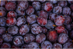 An introduction to purple fruit and veg