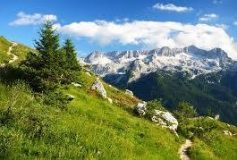 Summer in the French Alps