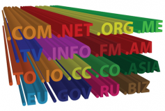 How many domain names do I need to buy?